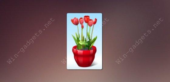 Виртуальный цветок на рабочий стол Windows 7.